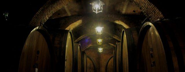 дегустация вин с гидом