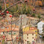 Групповые экскурсии по Тоскане (сентабрь-октябрь 2020)